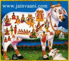 """हिन्दू धर्म में ...""""गाय""""... को ...""""माँ""""... का स्थान दिया गया है हर हिन्दू गाय के प्रति आस्था रखता है ...!!! ............. पर विडम्बना तो देखो .............. .... """"माँ"""".... को ...""""खा जाने वाले"""" ........... उसके ही बेटों से ...""""भाईचारे""""... की बातें भी किया करते हैं.................. शर्म करो यारों. .......... अगर भाईचारे की ज़रा भी परवाह है तो पहले ..........""""भाई की माँ"""".... """"गौमाता""""... से भाईचारा बनाओ  #SaveCow #SaveEarth #jainism #gaumata #hinduism  www.jainvaani.com"""