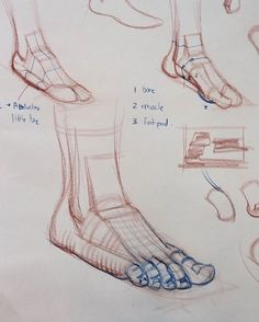 Anatomy Drawing Tutorial More demos afoot Figure Drawing Tutorial, Human Figure Drawing, Figure Sketching, Figure Drawing Reference, Anatomy Reference, Drawing Tutorials, Pose Reference, Feet Drawing, Body Drawing