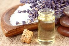 Essential Oils That Naturally Repel Fleas