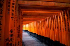 The Complete Itinerary: The Best of Japan in two weeks by Rail - Kyoto