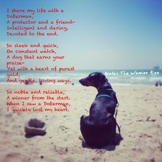 Love this poem and picture that I repinned! This was original text that went with it: My Doberman Pinscher Kratos at the beach, I found this poem online. unknown in whom wrote it
