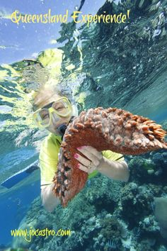 The Great Barrier Reef - What to expect and 8 Top Tips