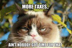 Tard hates taxes...especially on cat food.