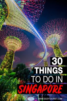 Wondering what to do in Singapore? This travel guide will show you the best attractions activities places to visit and fun things to do in Singapore. Start planning your itinerary and bucket list now! babies flight hotel restaurant destinations ideas tips Singapore Guide, Singapore Travel Tips, Singapore Itinerary, Visit Singapore, Best Places In Singapore, Cool Places To Visit, Places To Travel, Travel Destinations, Travel Diys