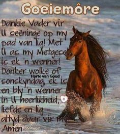 Good Night Quotes, Good Morning Good Night, Good Morning Wishes, Afrikaanse Quotes, Morning Pictures, Morning Pics, Goeie More, Armor Of God, Morning Greeting