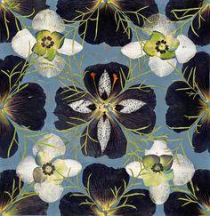 Herbarium Gunilla Lagerhem Ullberg's Art Collection of Pressed Flowers.