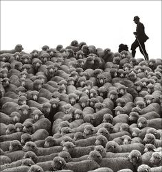 Janos Eifert:  Pastorale  (1978) #vintage