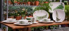 Filix Botanica Fern Dinnerware from NY Botanical Garden Ny Botanical Garden, Irish Cottage, Real Plants, Geraniums, Ferns, Natural Wood, Dinnerware, Rustic, Table Decorations