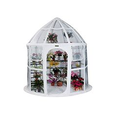 Flowerhouse Conservatory White * Check Out This .