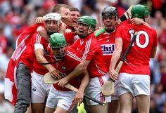 full time cork v dublin 2013 Love Ireland, Dublin, Cork, Rebel, Imagination, Celtic, Bunny, Football, Inspired