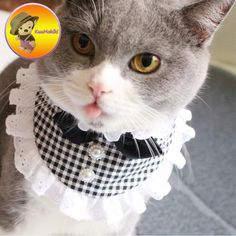 Cheap bandana pet, Buy Quality dog lace directly from China puppy pet Suppliers: Personalize Design Lace Pets Dogs cats Neck Scarf Collar Adjustable Puppy dog Bandana Pet Puppy Cat Neckerchief Hand Made Pet Puppy, Pet Dogs, Dogs And Puppies, Dog Cat, Bandanas, Online Pet Supplies, Dog Supplies, Neck Accessories, Handmade Crafts