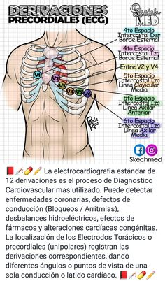 Studying Medicine, Medicine Student, Medicine Quotes, College Notes, Bullet Journal Lettering Ideas, Medical Anatomy, Jobs, Med Student, Medical Assistant
