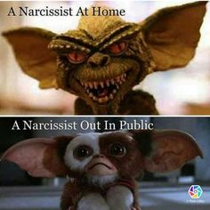 I don't think I've ever seen a better representation of Narcissism than this. Narcissistic People, Narcissistic Mother, Narcissistic Behavior, Narcissistic Sociopath, Narcissistic Personality Disorder, Toxic Relationships, Emotional Abuse, Psychopath, Domestic Violence