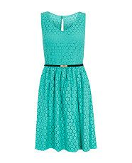 Light Green (Green) Mint Green Sleeveless Geo Lace Belted Skater Dress | 298881931 | New Look