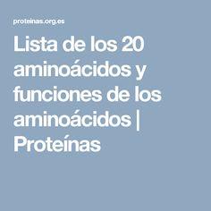 Lista de los 20 aminoácidos y funciones de los aminoácidos | Proteínas