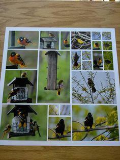Pastel Birds Spring Scrapbook Page Kit