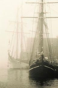 fog in the harbor
