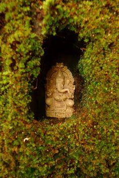 Jeffrey Bale's World of Gardens: Garden Altars Ganesh Temple, Ganesha, Jai Ganesh, Indian Garden, Serenity Now, Silver Wedding Jewelry, Buddha Zen, Home Altar, Cottage Renovation