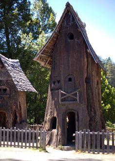 Tree House @ the Redwoods Tree of Mystery, Klamath California