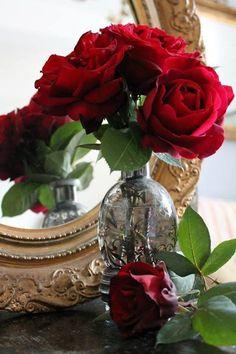 Ana Rosa | via Tumblr on We Heart It - http://weheartit.com/entry/93356512