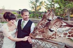 Ill still always wish that I had my wedding at a zoo....    Tucson Zoo Wedding! tucsonzoo.org  How Fun ;) Photography by brushfirephotogra...