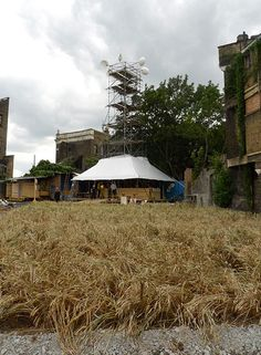 The Wheatfield and the Dalston Mill, two days after opening - Agnes Denes - a wheatfield in London and a tower for milling the wheat! ----------------------------- Inspiring on how to make both food in the city, but also do it artfully. Maybe something we can incorporate into our tofu kitchen project.