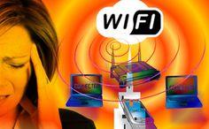 wifi-dolor_comunica-te