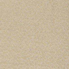 Color: 00106 Santa Cruz CCS20 Capellini - Shaw Caress Carpet Georgia Carpet Industries
