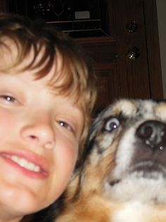 This dog who is shocked and appalled by what you are doing just outside of the frame.   22 Dogs Who Seriously Don't Want To Be Part Of Your Stupid Selfie