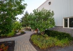 Landscaping can add in excess of 10% to the value of your home if properly maintained.  http://www.palandscapegroup.com/