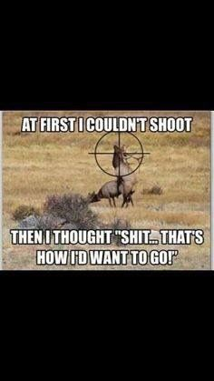 Is this how you would want to go? #hunting