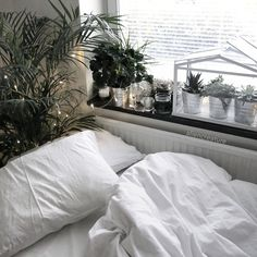 Love the idea of a plain white cover, plus all those plants