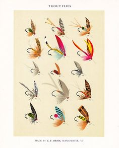 vintage fly fishing print #flyfishing #vintageflyfishing