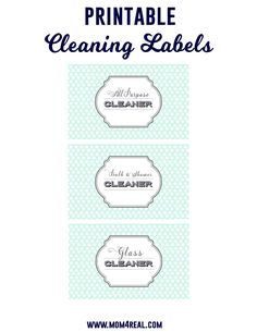 Free Printable Cleaning Labels and tons of DIY Cleaning Recipes, Solutions and Tips