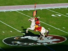 FSU Football...the best thing that happens in the fall!