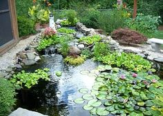 An example of small garden ponds with great landscaping.