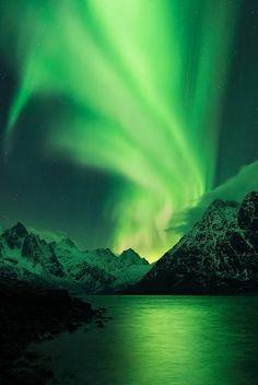 Aurora Borealis Lofoten by Felix Inden