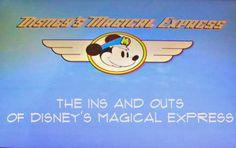 Magical Express - Disney Babies Blog