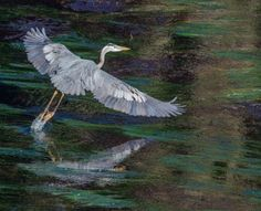 Great Blue Heron by Paul Brewer