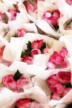 Rosy. www.bibleforfashion.com #bibleforfashion