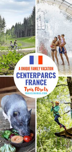 Add a stay at CenterParcs Trois Fôrets to your family vacation in France for nature play and lots fun for all ages! This amazing resort is all about family togetherness and play. Expect zip-lining, a water park, a children's farm, ropes courses and much more. Learn more in this review! #hotelreview #hotelsforfamilies #france #centerparcs #travelwithkids #familytravel Family Resorts, Family Vacation Destinations, Best Vacations, Hotels And Resorts, Indoor Activities For Kids, Fun Activities, Travel With Kids, Family Travel, Outdoor Play Structures