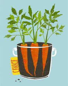 {Fall & Winter Season} Growing Food in 1, 2, and 3-GALLON Containers - Urban Organic Gardener