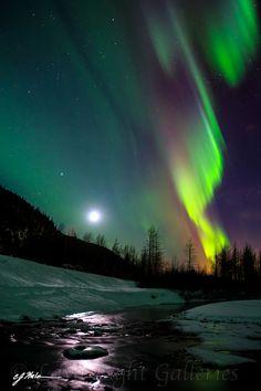 Aurora,  Alaska CJ - lava-light-galleries