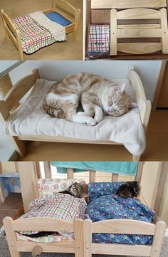 12 ingenious IKEA hacks, especially for your cats, which you should not miss … - Funny Animals Animal Room, Pet Beds, Dog Bed, Ikea Hacks, Cat Hacks, Cat Shelves, Cat Cave, Cat Room, Pet Furniture
