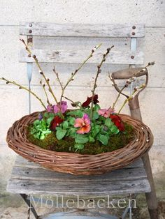 A low container with a grape vine wreath placed on rim ......???    Cute idea
