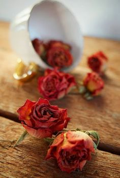 New images on imgfave Flowers Nature, Dried Flowers, Beautiful Flowers, Beautiful Pictures, Drying Roses, Autumn Rose, Flower Tea, Rose Photography, Little Flowers
