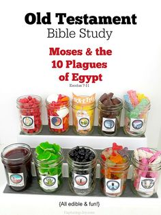 Old Testament Bible Study Moses and the 10 Plagues of Egypt, edible and fun! Capturing-Joy.com