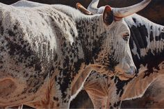 South African Contemporary and Upcoming Artist & Old Masters Art Gallery. Upcoming Artists, Pretoria, Cattle, Marie, Cow, Art Gallery, African, Paintings, Contemporary