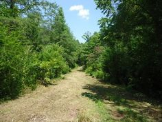 Land for Sale in Vonore TN