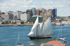"""""""Bluenose II"""" - Halifax Harbour - Nova Scotia - NS Tourism Photo - Check out the Tall Ships Festival this summer in Halifax. Ask us about our city stay packages! Nova Scotia Tourism, Nova Scotia Travel, Train Tour, By Train, Tall Ships Festival, Annapolis Valley, Northwest Territories, Train Journey"""